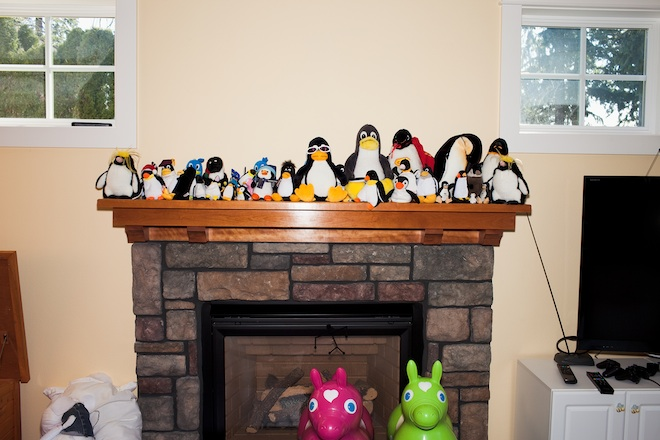 Penguins in Linus home